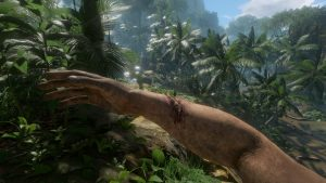 "Jungle Survival Game ""Green Hell"" Heads to PS4, Xbox One in 2020"