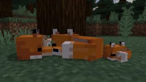 New Minecraft Update Adds Foxes, Character Creator, and More