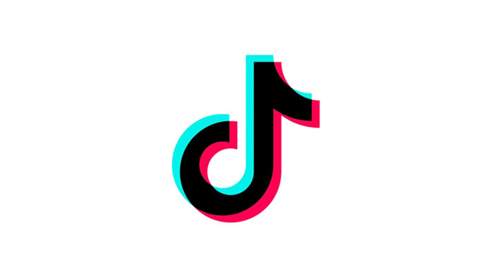 TikTok Confirms They Suppressed Videos by Disabled, Fat, and/or LGBT Creators - Niche Gamer