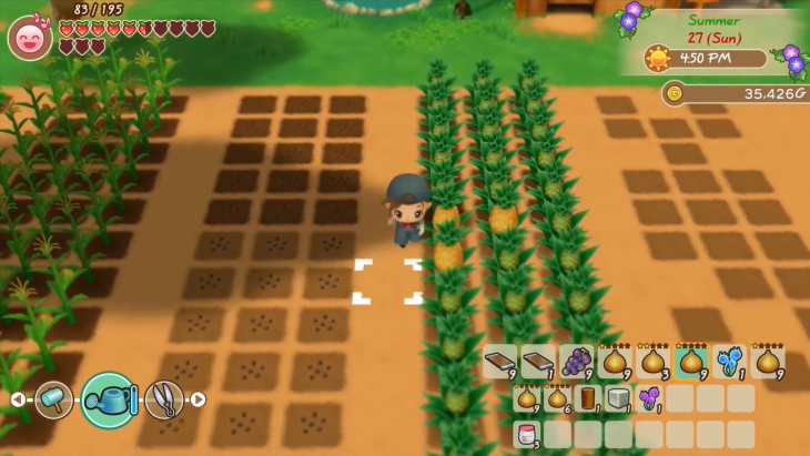Story of Seasons@ Friends of Mineral Town